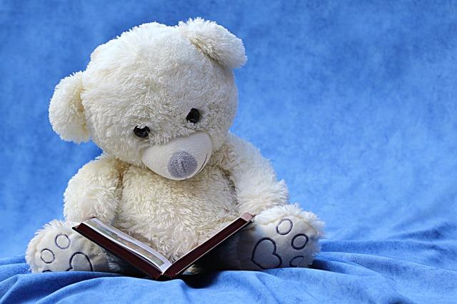 Miś czyta książkę