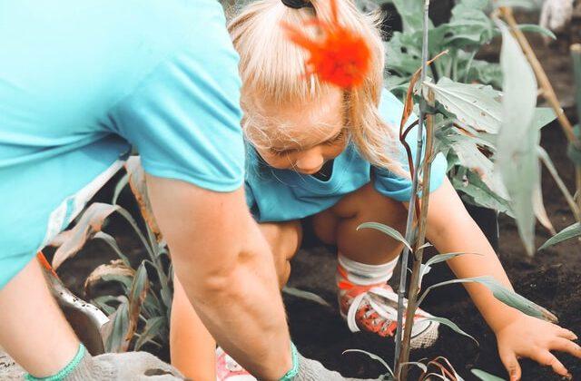 Dziewczynka pomagająca w ogrodzie
