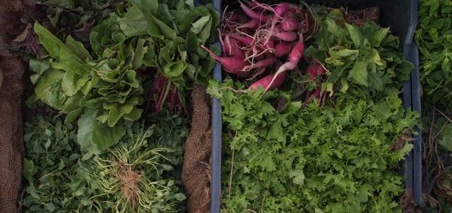 sezonowe warzywa, kalerosse